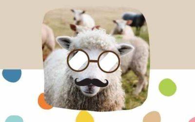 Pourquoi un mouton avec des lunettes ?